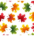 Autumn yellowed maple leaf vector image vector image