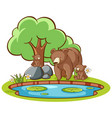 isolated picture grizzly bears pond vector image vector image