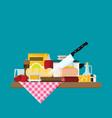 kitchen design over color background flat vector image vector image