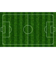 realistic soccer grass field football lawn field vector image