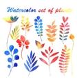 watercolor set of plants vector image vector image