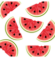 watermelon background isolated vector image vector image