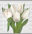 white tulips and frame on wooden background vector image