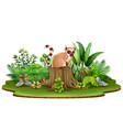 cartoon happy lemur sitting on tree stump with gre vector image vector image