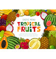 exotic fruits tropical papaya and pineapple fruit vector image vector image