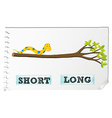Opposite adjectives short and long vector image vector image
