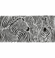 zebra skin pattern with two heads vector image vector image