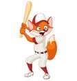 baseball fox vector image