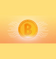 bitcoin digital cryptocurrency mining farm vector image
