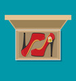 flat heels shoes in box vector image