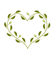Olives Leaves and Fruits in A Heart Shape Frame vector image vector image