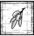 Retro olive branch black and white vector image vector image