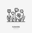 spring flowers flat line icon thin sign of vector image vector image