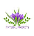 natural organic food bio eco labels and shapes vector image