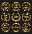 golden laurel wreath set on black background vector image vector image