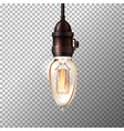 retro light bulb on transparent background vector image vector image
