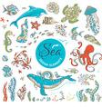 set of cartoon wild underwater sea life vector image vector image