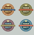Set of Vintage Retro Badge vector image vector image