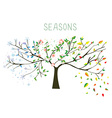 Tree during four seasons concept vector image