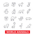 world animals giraffe zebra zoo parrot hippo vector image vector image
