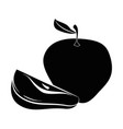 apple fresh fruit vector image vector image