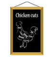 Chicken cuts vector image vector image