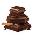 chocolate pieces 3d realistic icon vector image vector image