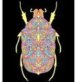 colorful beetle on black background vector image vector image