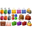 Different types of luggages vector image