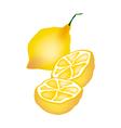 Fresh Lemon and Half on White Background vector image vector image