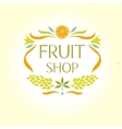 Fruit shop Vintage logo vector image
