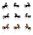 Horse set vector image