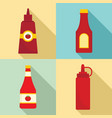 ketchup icon set flat style vector image vector image