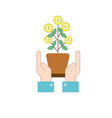 money plant with leaves coins and hands up vector image vector image