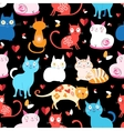 pattern of different cats vector image