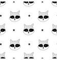 raccoon seamless pattern vector image