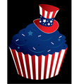Red white and blue cupcake vector image