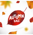 stock sale autumn falling vector image vector image