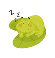 adorable frog sleeping on lotus leaf cute green vector image vector image