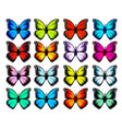 big collection colorful butterflies vector image vector image