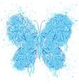 butterfly on grunge splash vector image vector image
