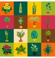 Garden plants Potted flowers in the garden vector image