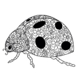 Ladybird coloring for adults vector image vector image