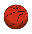 basketball ball sport image vector image