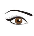 Beautiful brown eyes vector image vector image