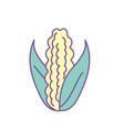 delicious and healthy cob corn food vector image vector image