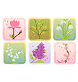 icon set with spring flowers vector image vector image