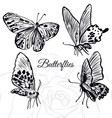 Ink hand drawn butterflies collection vector image