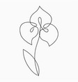 iris one line drawing continuous line flower vector image vector image