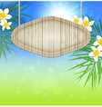 Summer background with palm branch vector image vector image